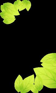 main-intro-leaf