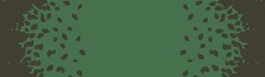 footer-leaf